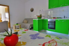 Apartment Mandic 1st floor (2)
